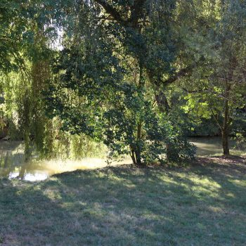emplacement-nu-sur-herbe-2